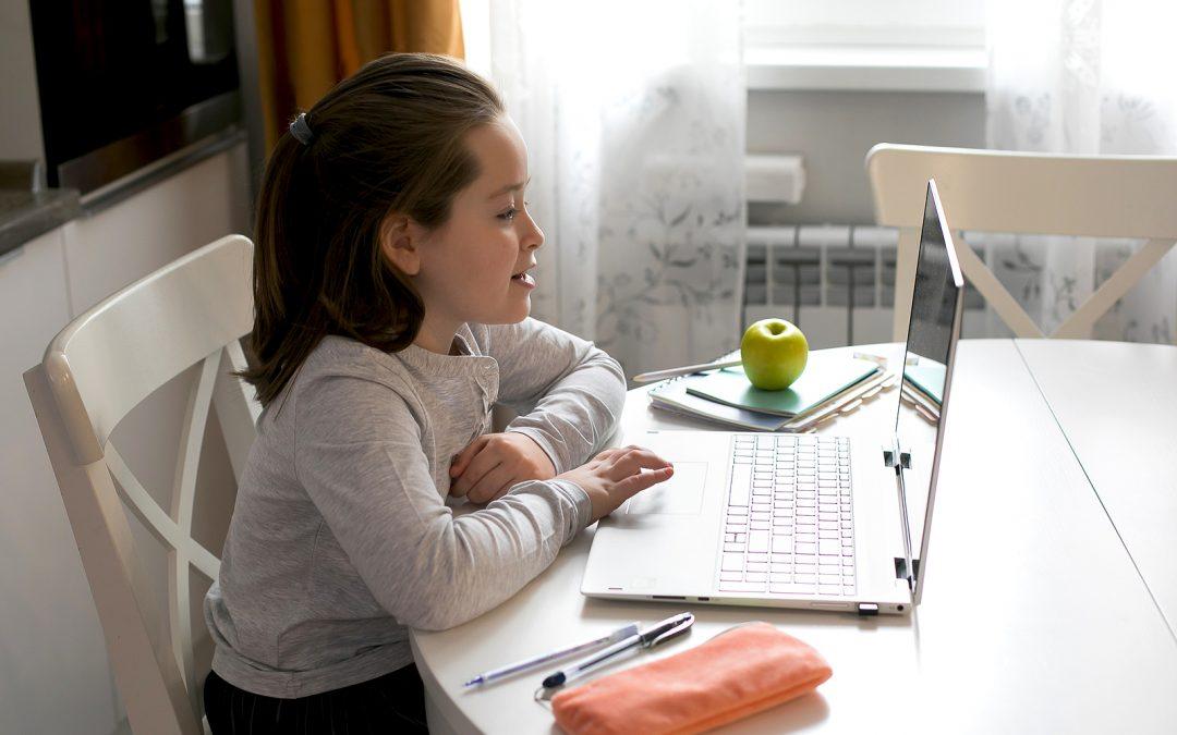 Computer Access Explains Education Gap Growth